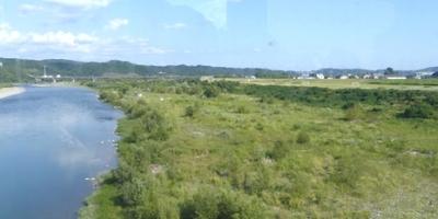 09.26 秋の天竜川原の蝶 0.jpg
