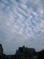 いわし雲02.JPG