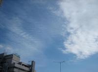 20101212meguro.jpg