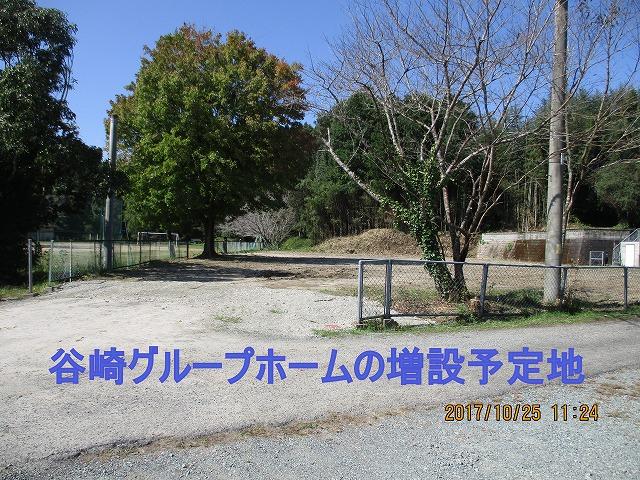 IMG_7524.jpg