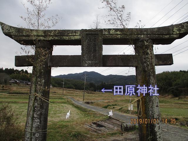 IMG_3391.jpg