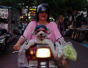 thaidog