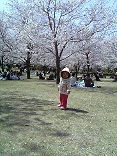 060331吉野公園