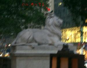 ライオンオンザハト