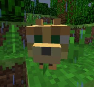 minecraft公式猫