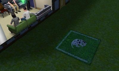 ボールと一緒に寝る犬