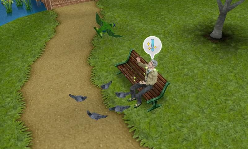 フリープレイ 鳥のエサやり