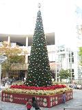 2011.12.22