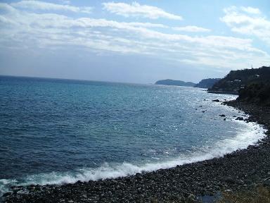 真鶴の海2