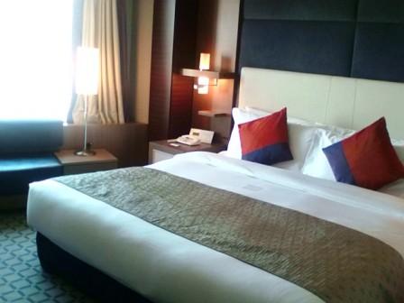 ANAホテル2009年9月−3