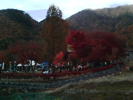 河口湖の紅葉1
