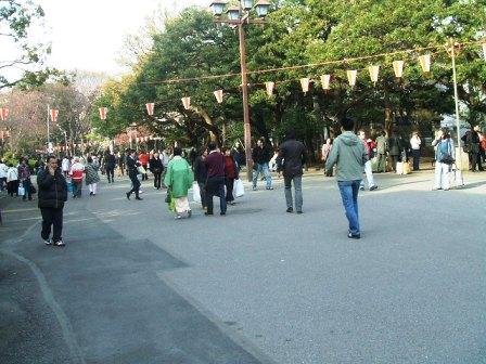 上野公園桜花見1