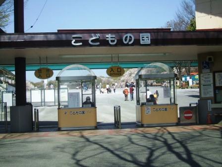 こどもの国の桜・花見1
