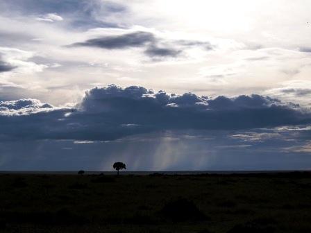 masaimara rain