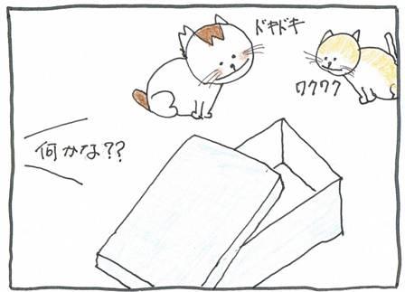 Vol 27_父の日2-2.jpg