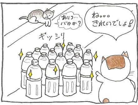 Vol 34_きれいなもの 4.jpg