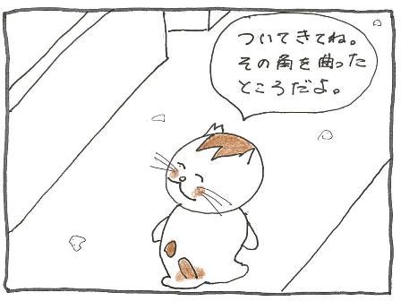 Vol 34_きれいなもの 3.jpg
