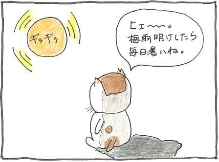 Vol 38_日焼け 1.jpg