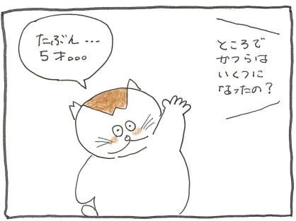Vol 49_七五三 3.jpg