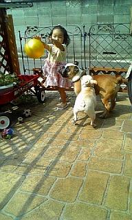 ボールで遊ぼう!