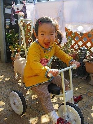 三輪車大好きです。