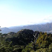 駒ケ林の頂上