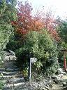御山神社への道1