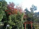 御山神社への道2