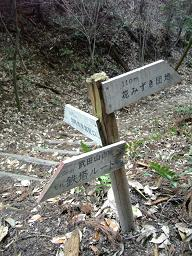 花みずき団地は×・武田山:鉄塔ルート?戻るの×・・・と思いました。