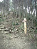 武田山に行く道