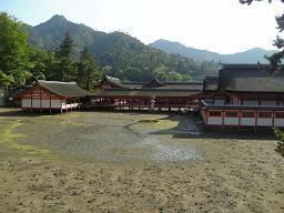 修学旅行生で賑わう厳島神社