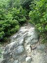 道7:石の道です。