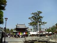 やっと到着!厳島弁財天大祭の大願寺です。