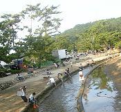 松林の川で涼む人