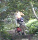 親子で登山