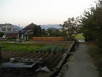 大利神社への道