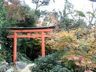 御山神社への道