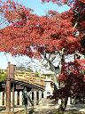 厳島神社出口付近
