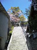 今伊勢神社へ参拝する階段