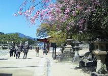 厳島神社前1