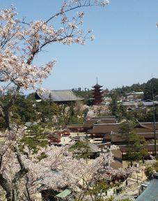 宮島の風景