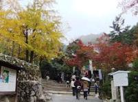 大聖院コース登山道入口