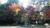 木比屋谷公園入口2