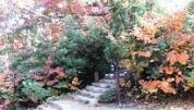 2-1 階段を上がると仁王門跡