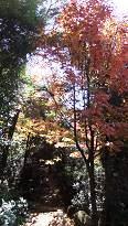 4-2 御山神社へ