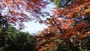 4-4 御山神社へ