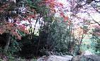 3-8 登山道
