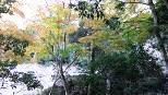 5-4 登山道 白糸の滝への道