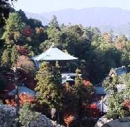 6-1 登山道から見た大聖院