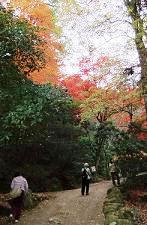 平松茶屋方面へ歩きます